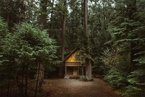 cozy-cabins-in-the-woods-52-575fde7f7289c__880