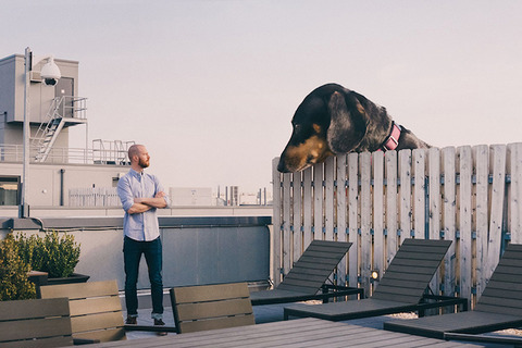 mitchboyervivianthegiantwienerdogdesignboom05