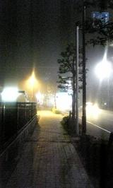 a81c1c46.jpg
