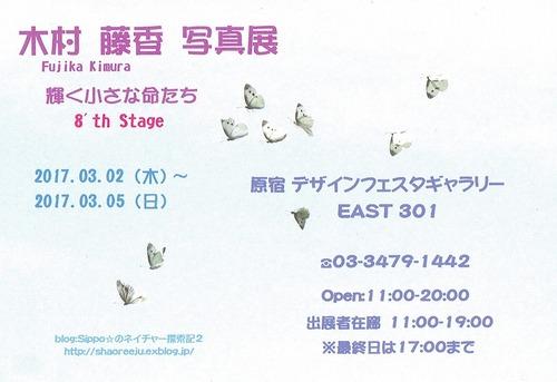 s-CCF20170302木村さん写真展案内状トリ