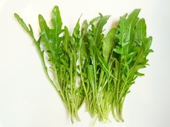 R0041331_セルバチコ収穫_20110406