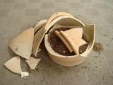 DSC04761_ローズマリー大株の鉢の残骸