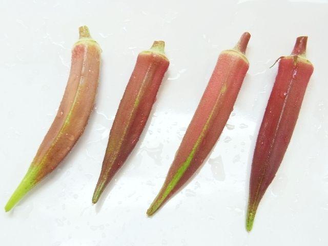 R0052081_赤オクラの実収穫_20120814