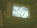 DSC05928_川昌の店内のテレビ