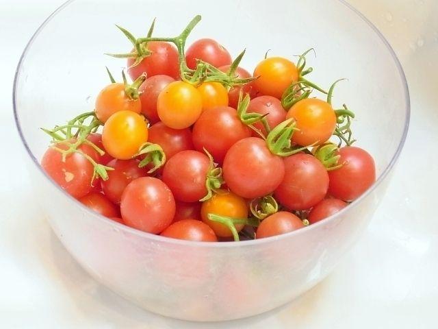 R0051551_ミニトマト収穫_20120728