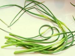 R0042208_ニンニクの芽収穫_20110510