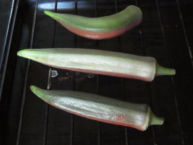 R0052233_赤オクラの丸焼きで半分緑に_20120818