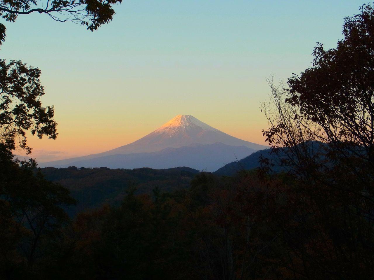 R0059154_修善寺自然公園_20131201