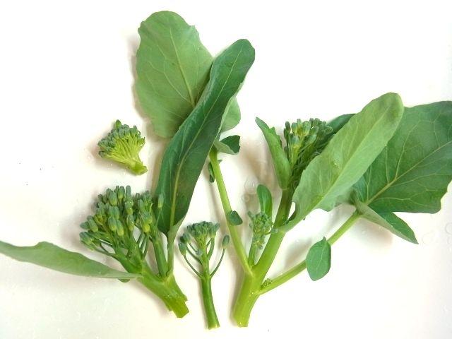 R0042823_ブロッコリー花芽収穫_20110529