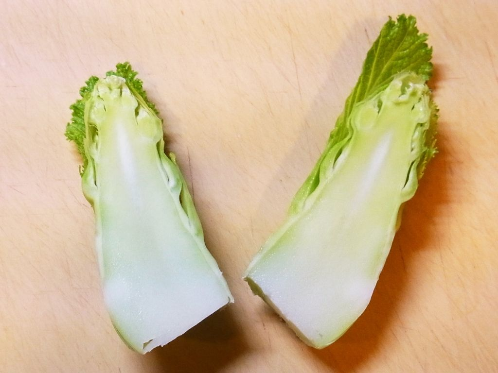R0060040_子持ち高菜の花芽の断面_20140316