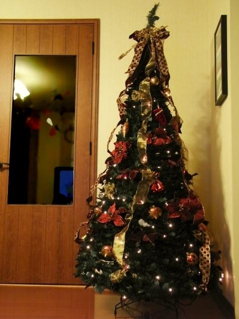 R0021904_クリスマスツリー設置完了_20091123