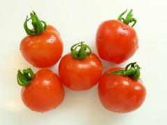 R0043565_ミニトマトベリーガーデン収穫_20110705