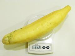 R0052583_どでか黄色キュウリ2重さ942g_20120901