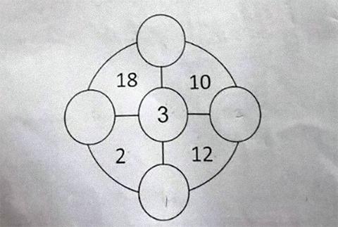 305026b1 (1)
