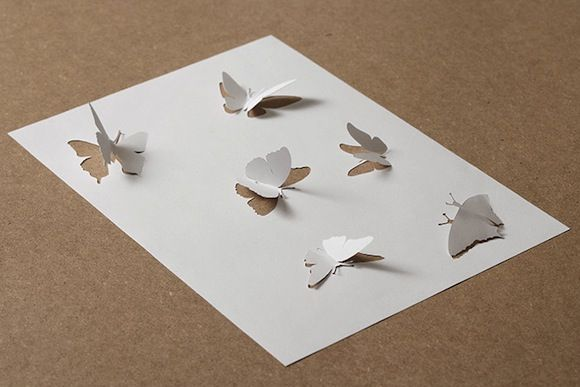 13_butterflies-trying-to-escape-their-shadow_v2
