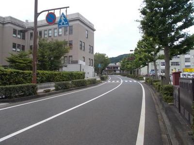 県庁横の道_2019_7_21