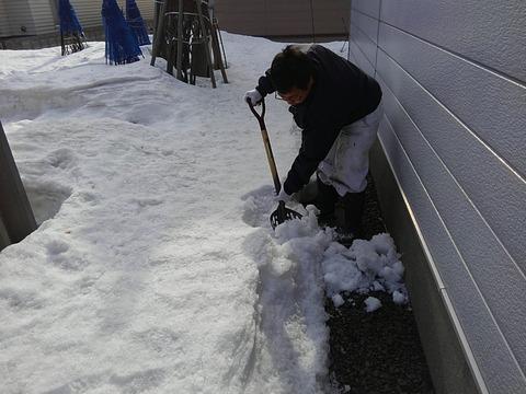 細かく雪を割ることで雪解けが早くなります