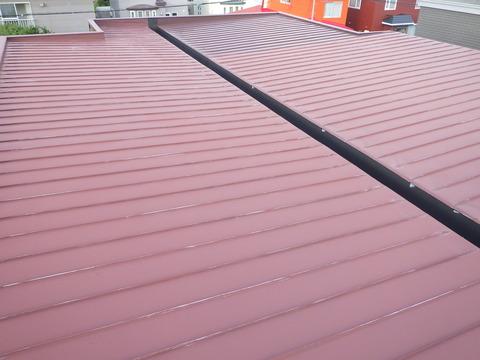 ぱっと見、それほど傷んでいない屋根