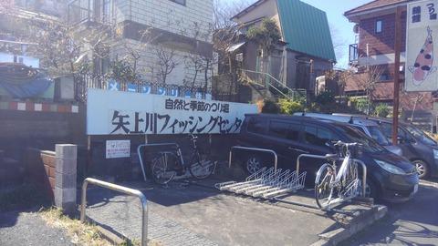 矢上川フィッシングセンターです!