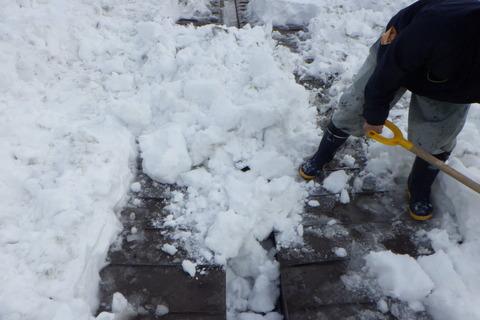 凍結防止の為雪をかぶせておきます