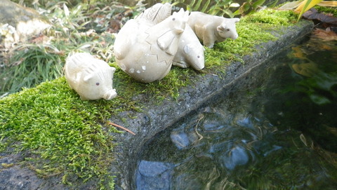 武田神社の名水、姫の井戸!