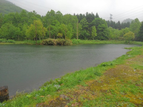 静な湖畔・・・
