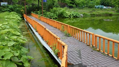 石炭の歴史村 水上レストランへと続く橋