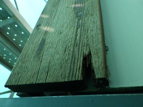 木材が腐っている!