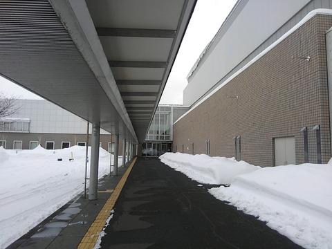去年と同じ札幌コンベンションセンター
