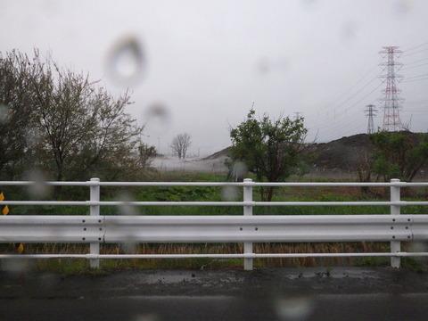 今日は雨です