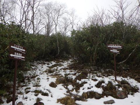 寒々しいニセコイワオヌプリ山