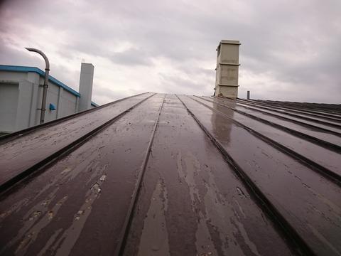 屋根全体に剥離が発生しています