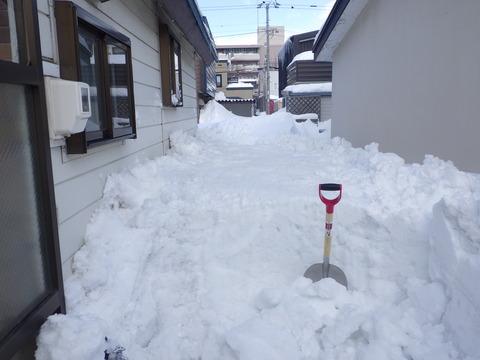 落雪は氷や水分を含んでいるので重い