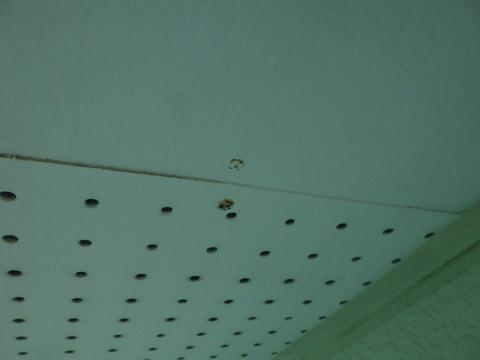 軒天井板を止めている釘頭がサビている