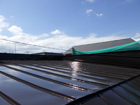 屋根はハイソリッドシリコン仕上げ