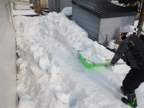 スノーダンプで排雪です!