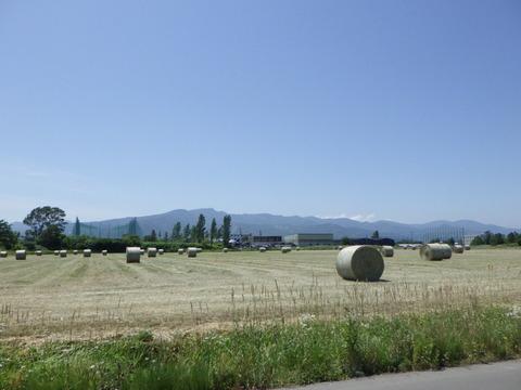 7月上~中にかけて牧草ロールを作るようです^^