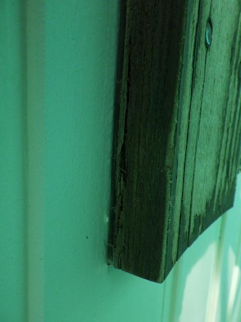 木材裏側からの腐食