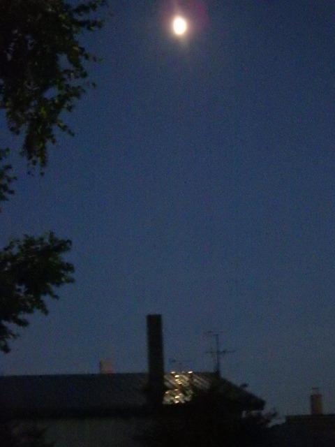 月明かりが屋根に映る