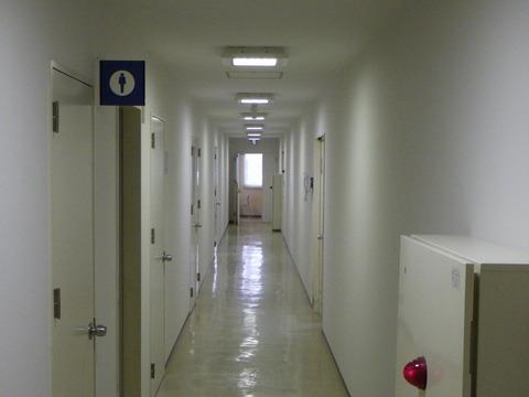 廊下①施工完了
