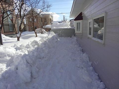 こんな感じで落雪除去