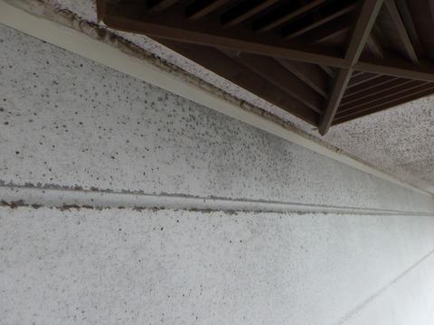 軒天井際にサビが多発しています