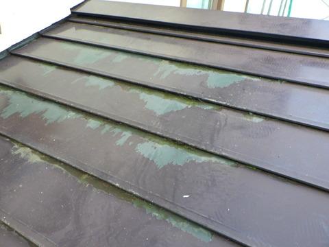 屋根にも塗膜剥離が発生している