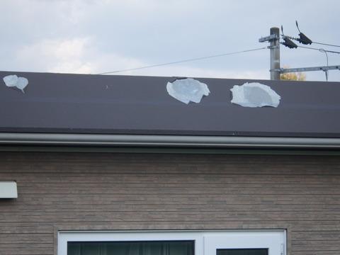 塩ビ鋼板塗装、酷い場合はこんな感じに剥がれる