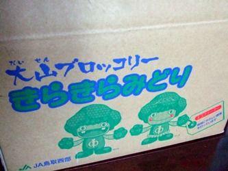 鳥取ブロッコリー0005