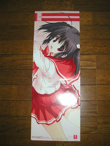 Leaf Illustrations MISATO MITSUMI EDITION スティックポスター
