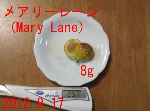 Mary Lane01