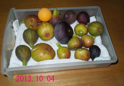 収穫10-4