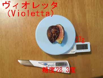 01Violetta