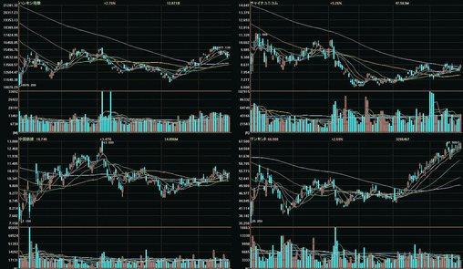 中国株 ポートフォリオ20090429